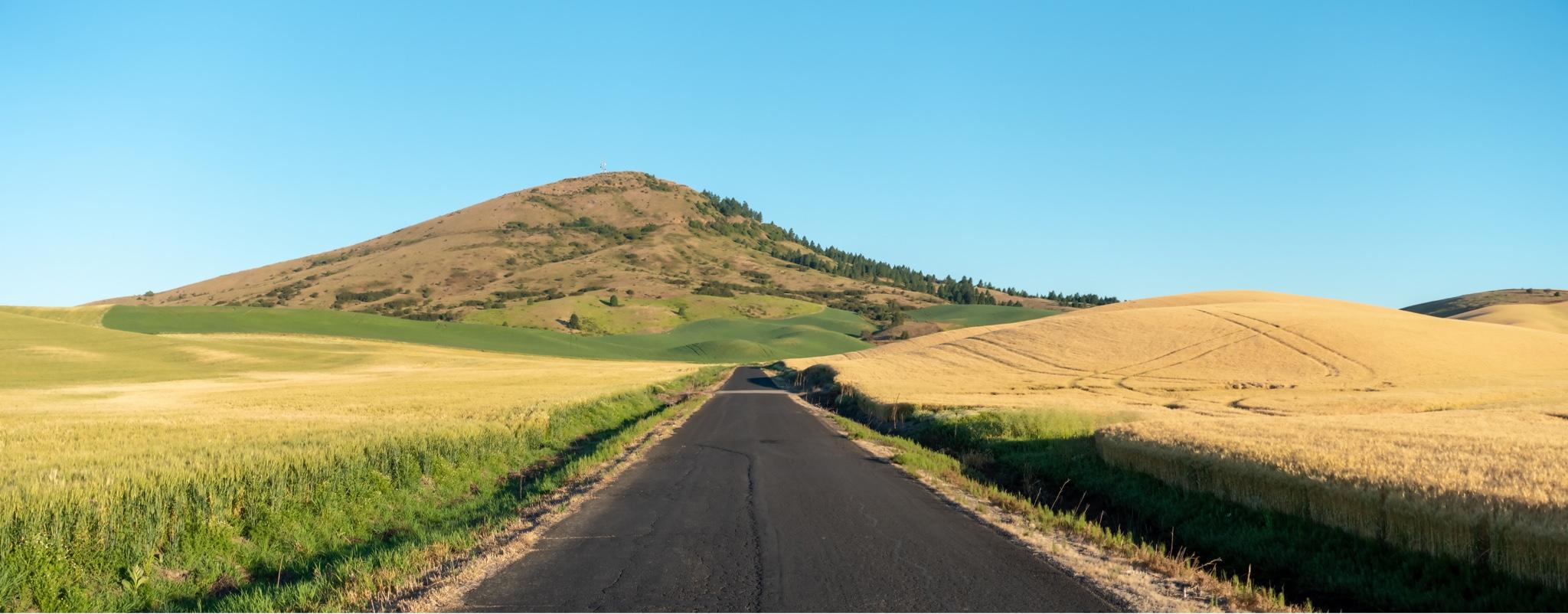 Rural Road in Washington State